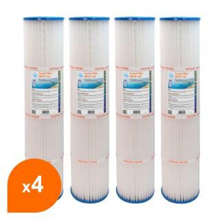 Filtre SPCF-119 - Crystal Filter® - Compatible Pentair® QUAD DE 80 (lot de 4)